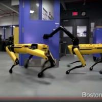 「ロボット は なかまを よんだ!」ボストン・ダイナミクスの…