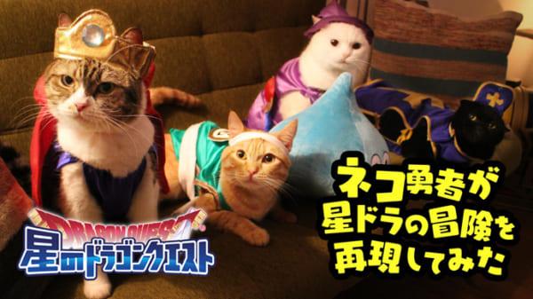 猫の勇者が活躍する「星のドラゴンクエスト」動画がニャンとも猫草生えるwww
