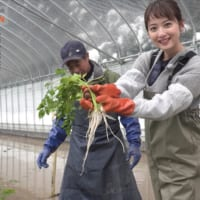 秋田魁新報・佐々木希編集長が「秋田の魅力」をライ…