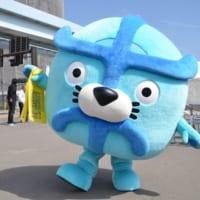 開場まで半年・豊洲市場で「魅力発信フェスタ」開催!初日を取…