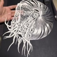 切り絵作品なのに3D感すごい!平面なオウムガイの切り絵が立…