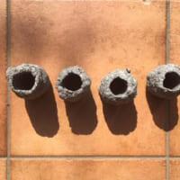 新聞紙と水で「紙薪」作り!警視庁が教える代替燃料の作り方は…