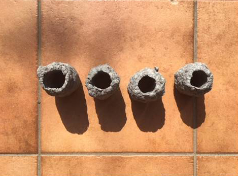 新聞紙と水で「紙薪」作り!警視庁が教える代替燃料の作り方は覚えておいて損はないかも?