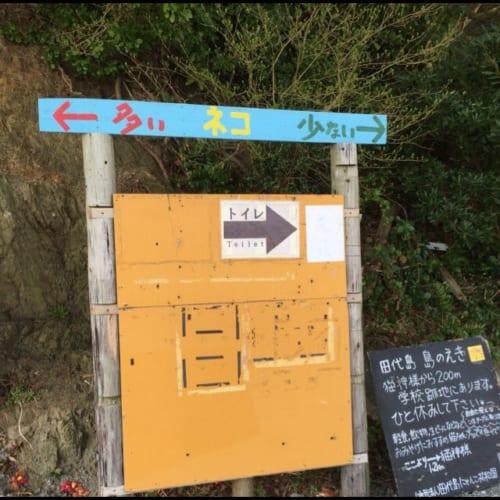猫神様のいる島にあるちょっと変わった看板が話題 「←多い ネコ 少ない→」