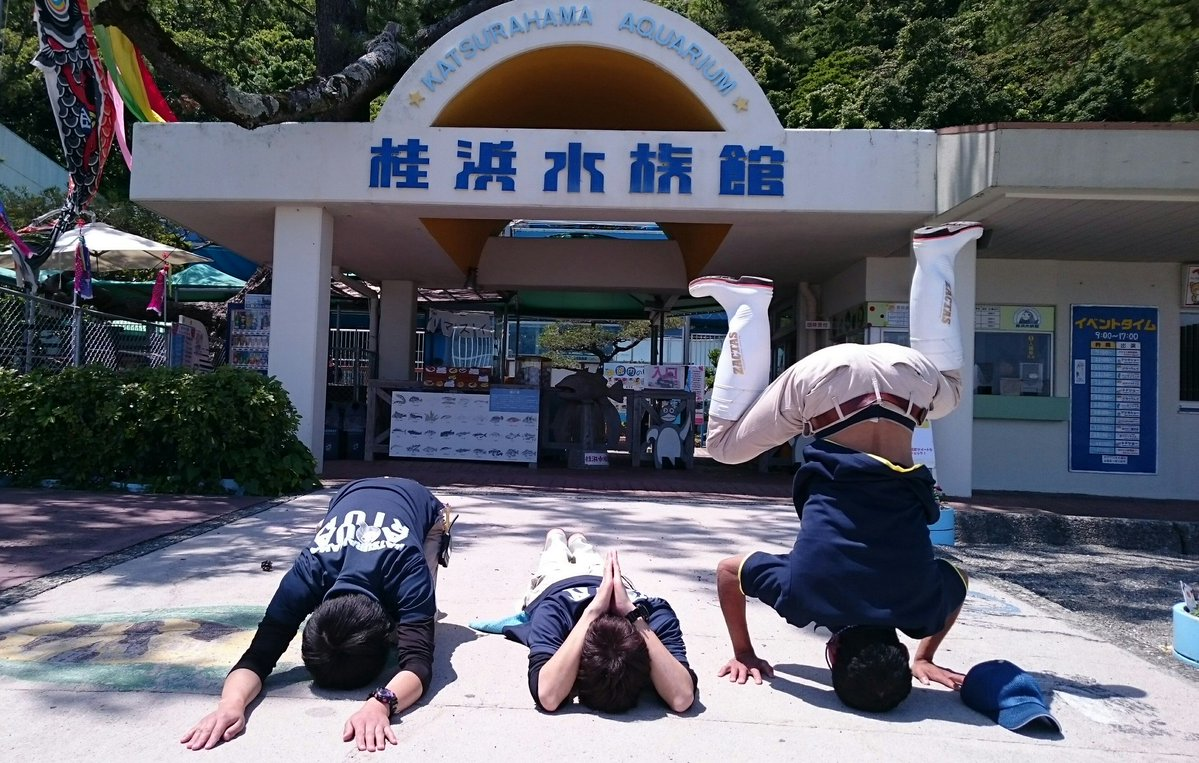 「エクストリーム土下座」で各メディアをざわつかせた「桂浜水族館」に事の真相を聞いてみた!