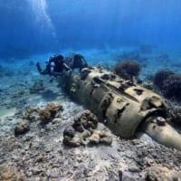 戦艦長門の「いま」を紹介したい 水中写真家がクラウドファンデ…