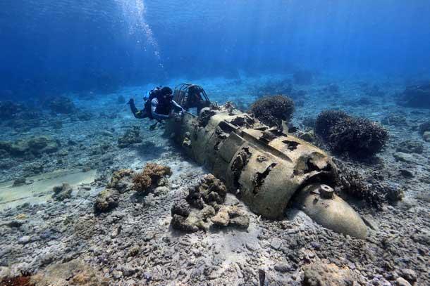 戦艦長門の「いま」を紹介したい 水中写真家がクラウドファンディング
