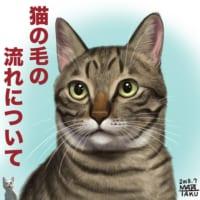 イラストを描くとき以外にも重宝しそう!猫の毛の流れの図解が分…