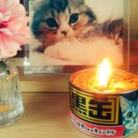 カメヤマローソク「故人の好物シリーズ」 猫缶まであるライン…