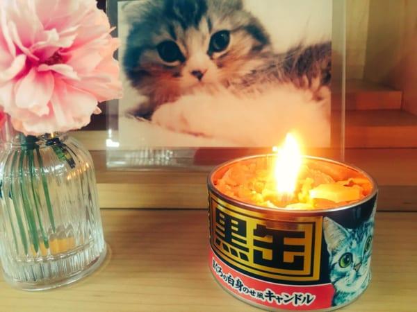 カメヤマローソク「故人の好物シリーズ」 猫缶まであるラインアップにびっくり
