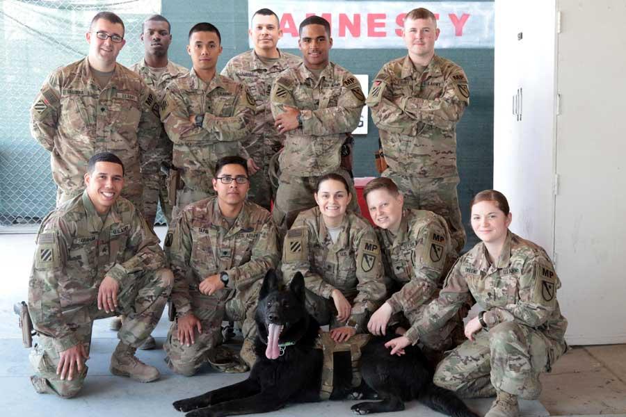 ケガした「わんこ」も助けます!アメリカ軍の軍用犬応急手当て訓練 ...