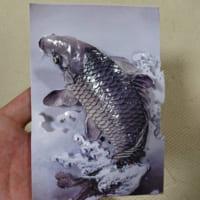 本物かと見間違うほど精巧にできた鯉のシャドーアートにネット…