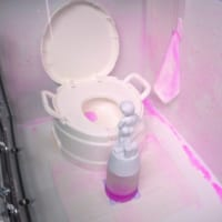 トイレのニオイの原因は実は壁にあった P&Gが研究結果を明ら…