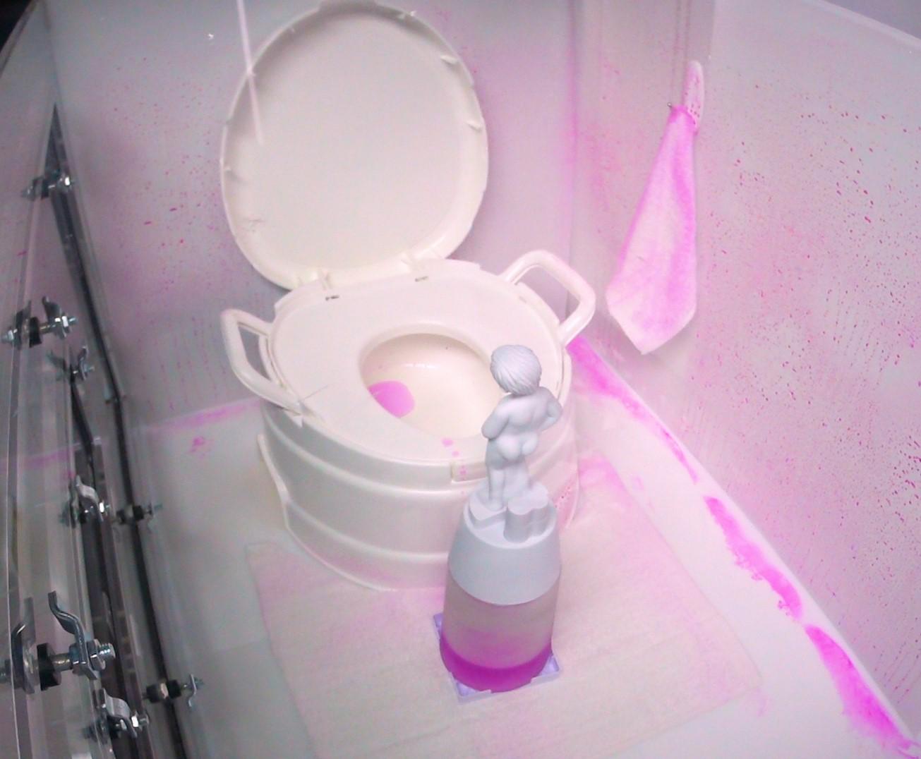 トイレのニオイの原因は実は壁にあった P&Gが研究結果を明らかに