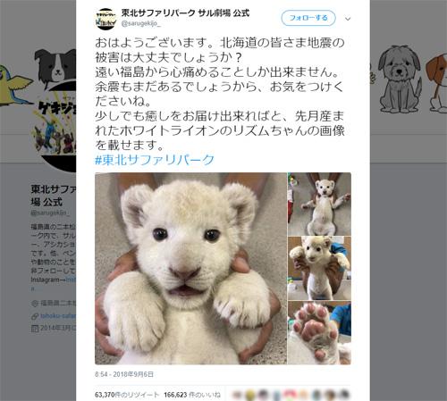 福島の動物園が発信した「癒やしの支援」 可愛いはげましに多くの反響