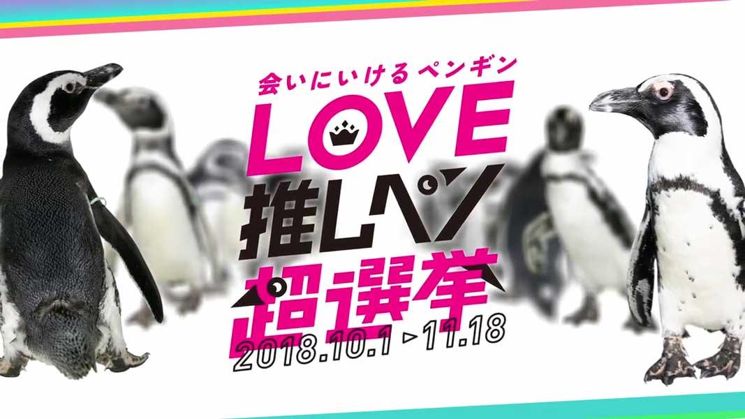 リアルPPP「会いに行けるアイドルペンギンユニット」東西で爆誕