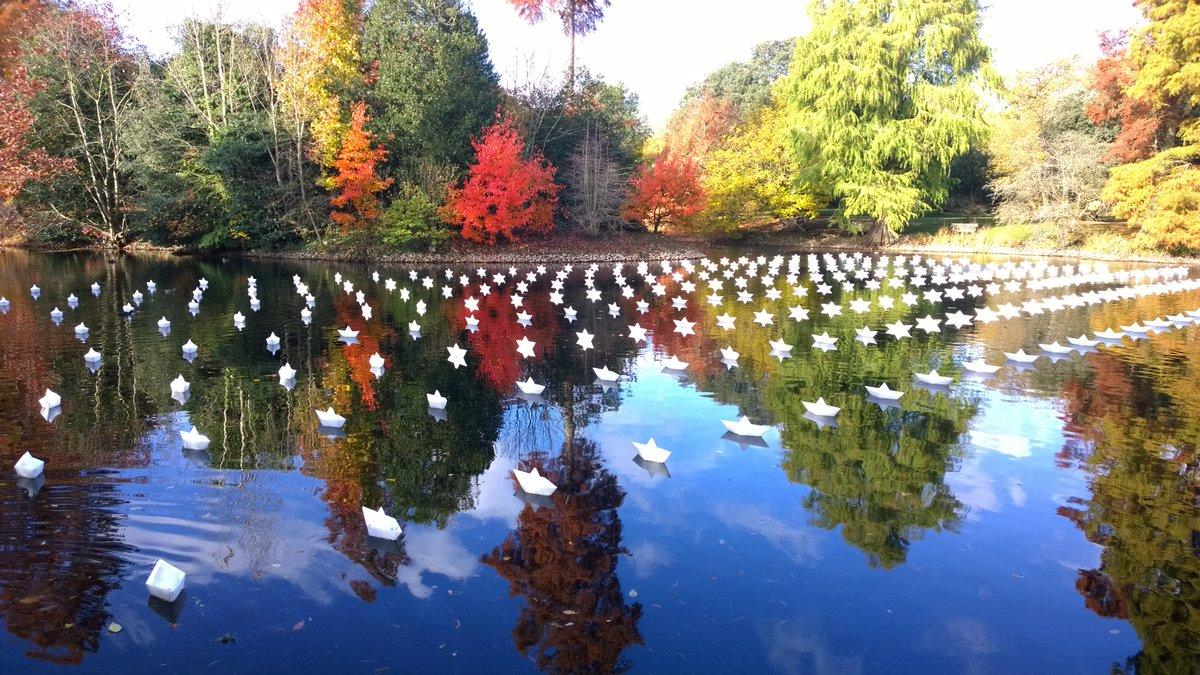 折り紙の船たちが無数の星に……イギリスの庭園と和の融合が幻想的