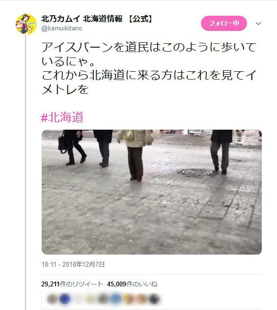 北海道民のペンギン歩きに大注目...