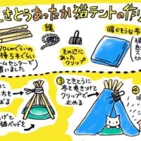 冬はテントでぬっくぬく 自作保温テントに猫まっしぐら