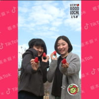 「とちぎ映え」スポットをPR 栃木県とTikTokが「#To…