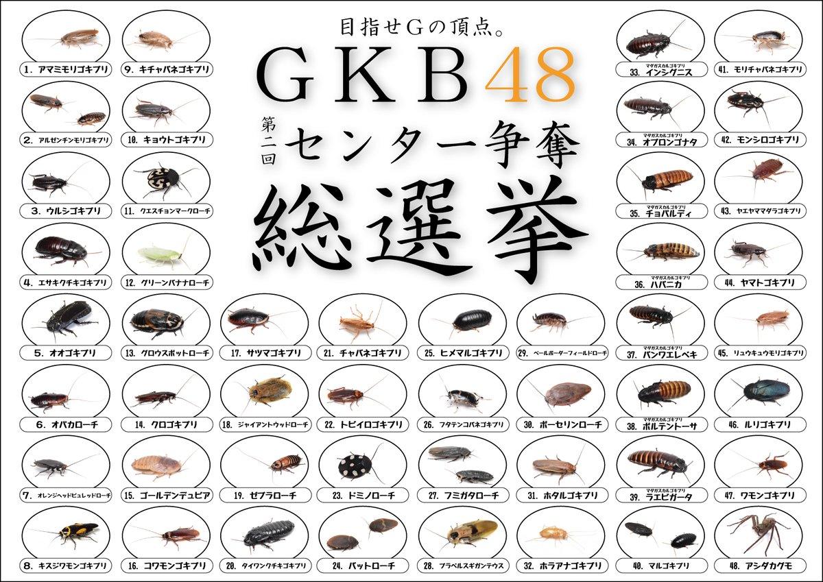 握手会も開催! ゴキブリ人気1位を決める「GKB48総選挙」がアツイ