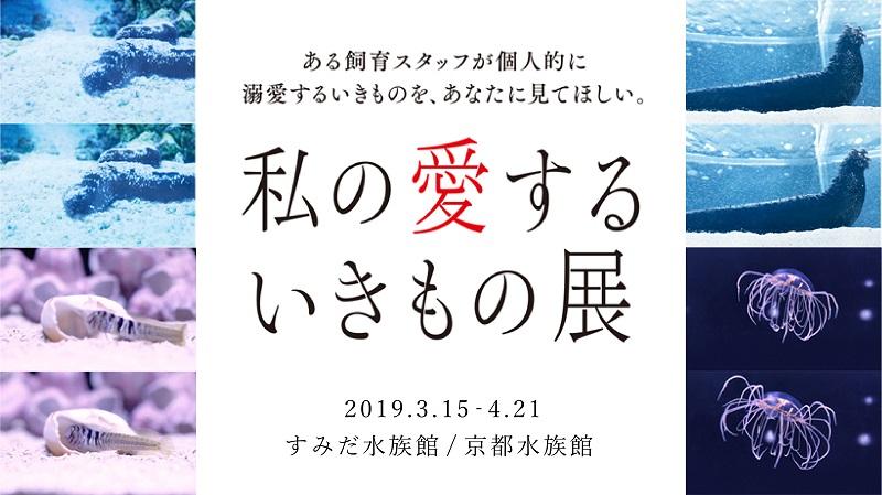 本物そっくりナマコロールも登場!すみだ水族館と京都水族館で「私の愛するいきもの展」開催