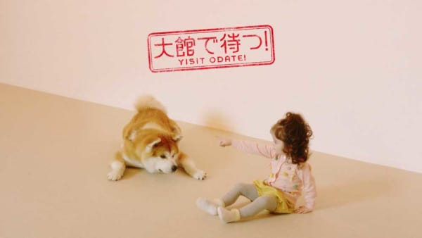 "Mofumofu天堂! ""Akita Inu no Sato""于5月8日在秋田大馆站前隆重开幕"