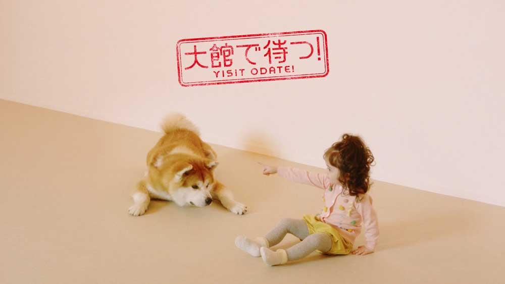 もっふもふ天国!秋田県大館駅前に「秋田犬の里」5月8日グランドオープン