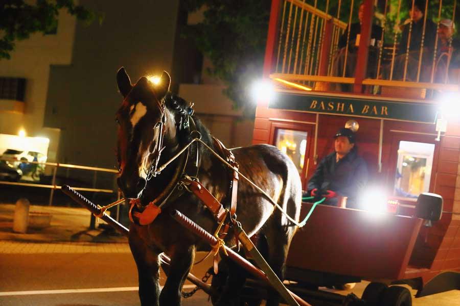 馬とともに変化する景色とお酒を楽しむ「馬車BAR」帯広の街をゆく