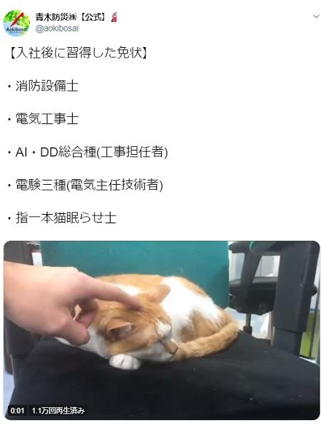 消防設備会社に入って習得した技能「指一本猫眠らせ士」で猫がスヤァ