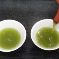 氷水で淹れる爽やか緑茶がお手軽に 疲れを癒す冷茶の作り方