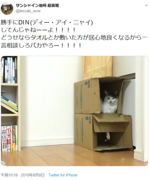 サンシャイン池崎が愛猫に「DIN」されたと叫んでいるツイートに箱猫殺到