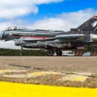 ドイツ空軍「リヒトホーフェン」航空団 創設60周年記念塗装機…