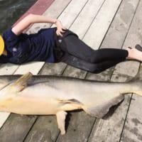 タイへ一人旅 釣り上げた巨大ナマズと添い寝する妹のアクティ…
