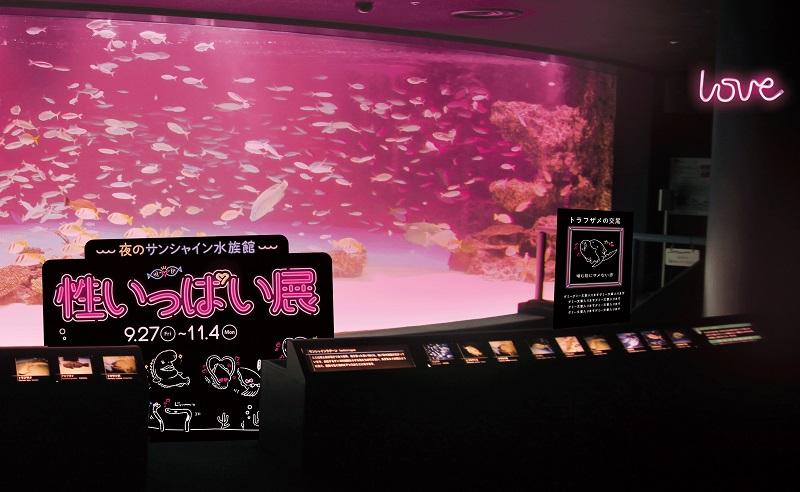 生命の根源に迫る!サンシャイン水族館で「性いっぱい展」夜間限定イベント開催