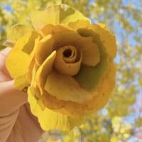 イチョウの落ち葉が黄色いバラの花に 落ち葉アートに「懐かし…
