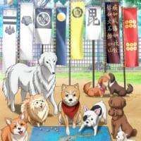 TVアニメ「織田シナモン信長」のPV&キービジュアル解禁 放…