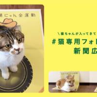 猫ホイホイな新聞広告で啓発 イエローハット「全国交通にゃん…