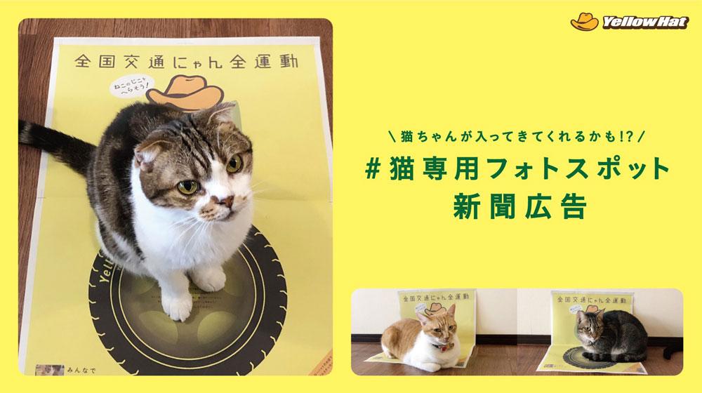 猫ホイホイな新聞広告で啓発 イエローハット「全国交通にゃん全運動」