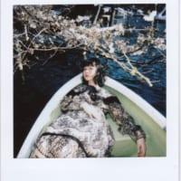 桜とともに綺麗な写真を撮ったつもりが……まさかの…