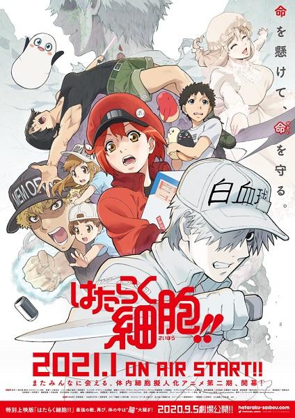 「はたらく細胞!!」第2期は2021年1月から放送 特別上映版の劇場上映も決定