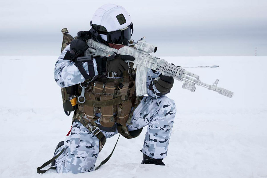 雪原 極地 の