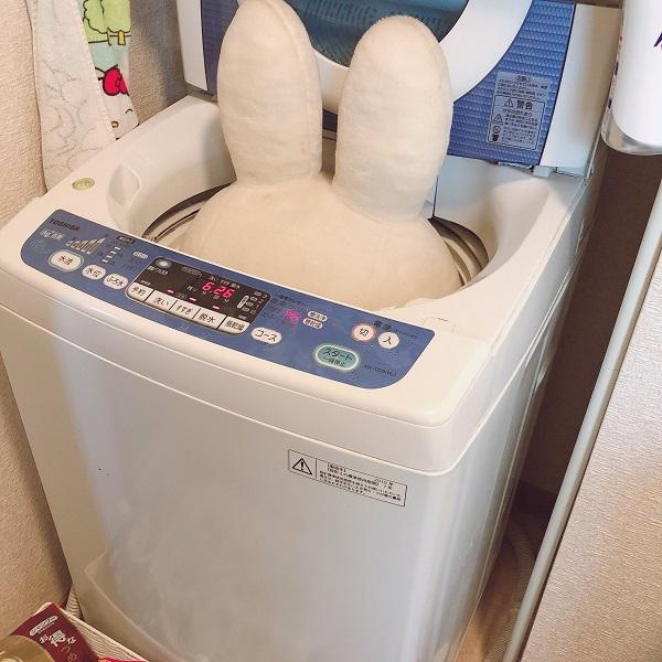 ぬいぐるみを洗濯しようとした夫 悩んだ結果に夫婦で爆笑