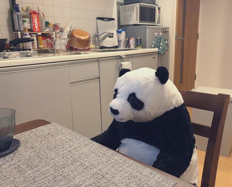 母が送ってきたデカいパンダのぬいぐるみ 長い在宅勤務で心の癒やしに