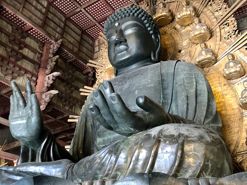 奈良の大仏がリモート参拝可能に ニコ生で24時間生放送