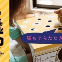 楽しみながら猫助け 保護猫支援イベント「ねこもぐらたたき大会…