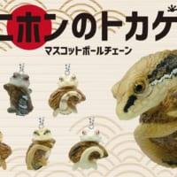 カプセルトイに「ニホンのトカゲ」が仲間入り 日本の生き物シリ…
