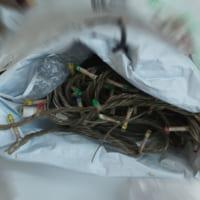 大人のおもちゃ(使用済)など……コンビニに捨てられる不法投棄のゴミたち