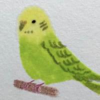 水彩作家考案の「おうち絵画」がすごい 在宅中の新しい趣味に…