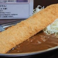 金沢チャンピオンカレーと駄菓子のビッグカツが夢コラボ 「ビッ…